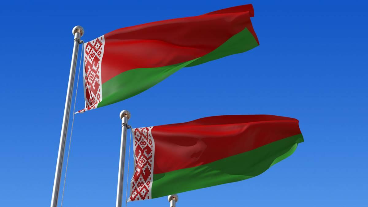 В Беларуси частное охранное предприятие получит снайперские винтовки